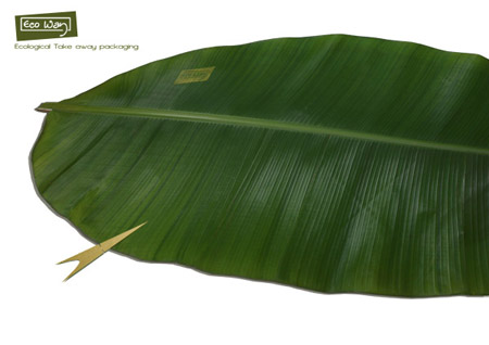 banana leaf packaging