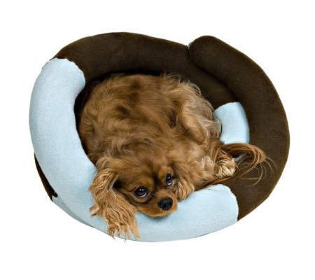 bella pet beds