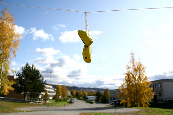 The Bird-shoe-house Project Became An Instant Art Installation In Norway