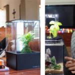EcoQube - Aquaponics System Brings Self-Sustainable Ecosystem in Your Aquarium