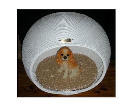 Pet Lounge