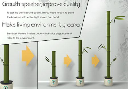 forsta speaker - Growing Bamboo