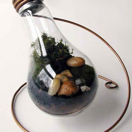 Terrarium from Recycled Light Bulbs