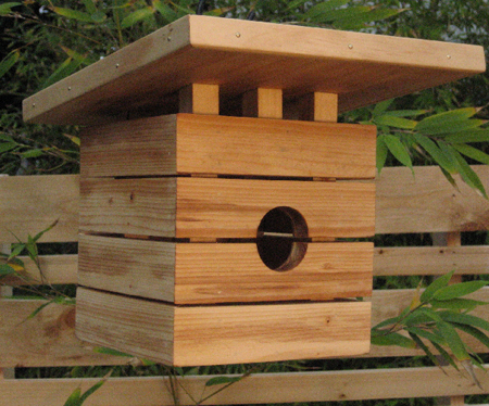 Show Some Care for Your Bird with a Bird House 