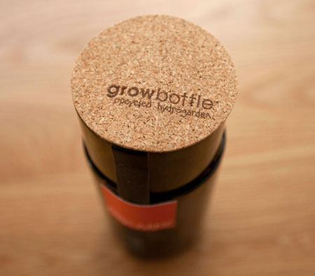 Herb Grow Bottle
