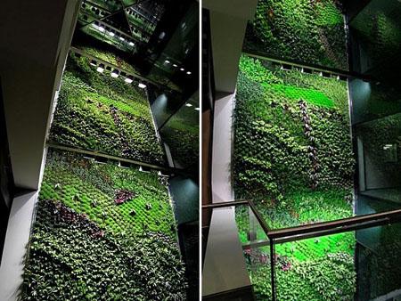 Indoor Vertical Garden Brings Fresh Air To Buildings