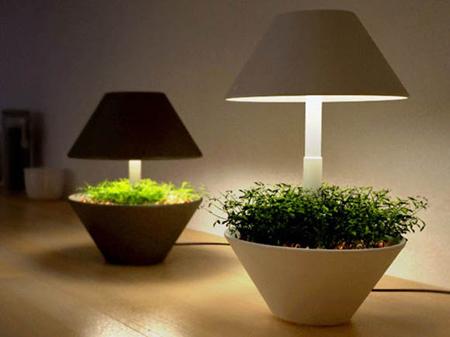 Lightpot