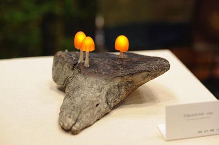 Mushroom Light