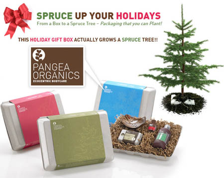 Gift Box That Grows a Tree from Pangea Organics