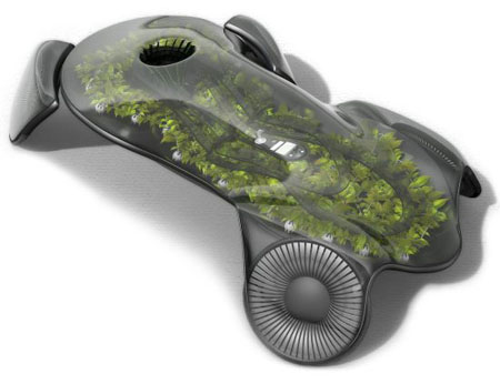 Photosynthesis Car