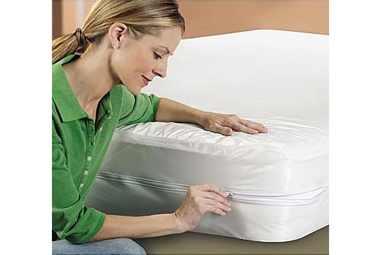 Sleep Safe Mattress ZipCover