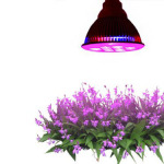 Growing Plants Gone Easy With Tao Tronics E27 Led Grow Light