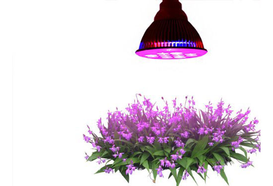 Tao Tronics E27 Led Grow Light