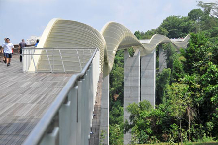 Telok blangah hill park built with respect to nature for Design bridge singapore