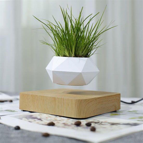 AIRSAI Floating Plant Holder Brings Magic and Greenery In The Room