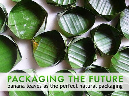 Banana Leaves Packaging