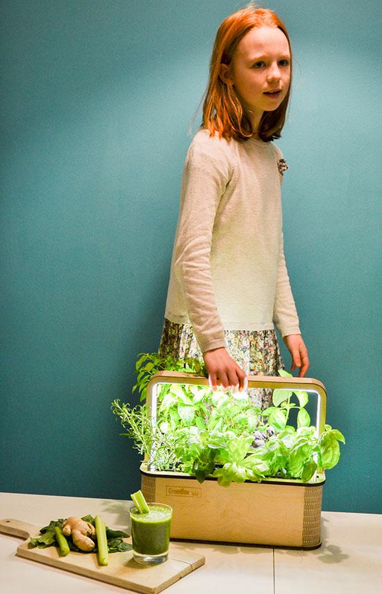 BerlinGreen GreenBox Smart Mini Indoor Garden