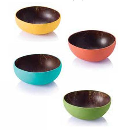 Coconut Palm Bowls