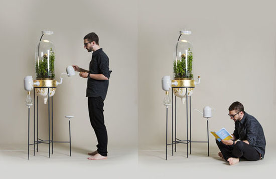 Drop by Drop - A Plant based water filtration system That Works just like Mini Amazon Rainforest by Pratik ghosh