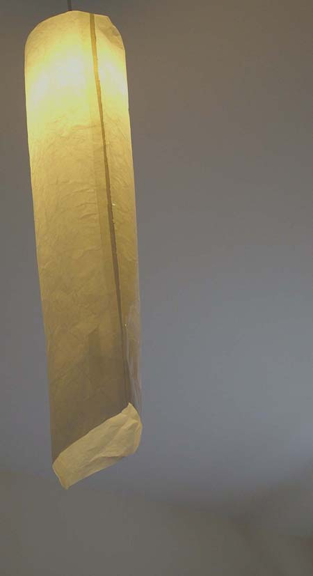 Eco Lampshade by Sam Dempsey