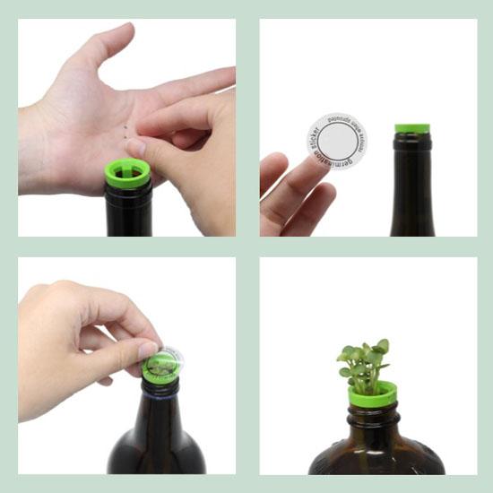 Edible Flowers – Bottle Garden Kit