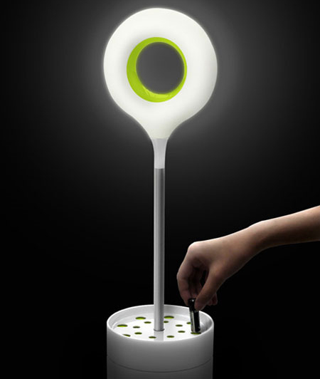 energy seed