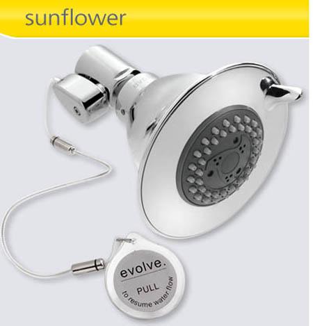Evolve Showerhead