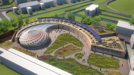 Fibonacci Inspired Wildflower Center