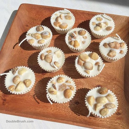 Homemade Natural Macadamia Fire Starters by Double Brush - Gift for Green Conscious Outdoor Enthusiasts