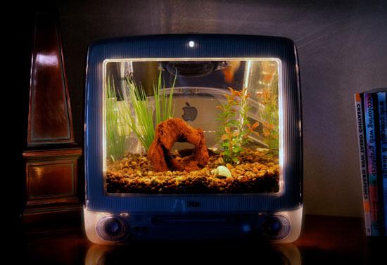 iMacquarium Fish Tank