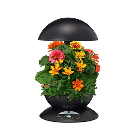 Miracle-Gro AeroGarden 3-Pod Indoor Garden with Gourmet Herb Seed Kit