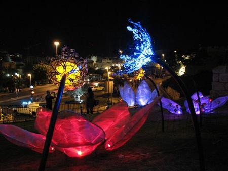 Solar Powered Night Garden