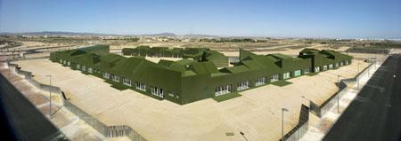 School of Grass
