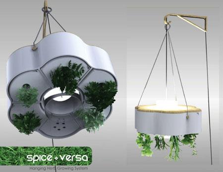 Spice-Vice Versa