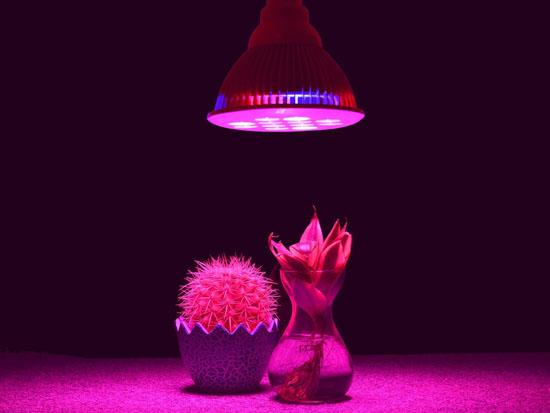Tao Tronics E27 Led Grow Light