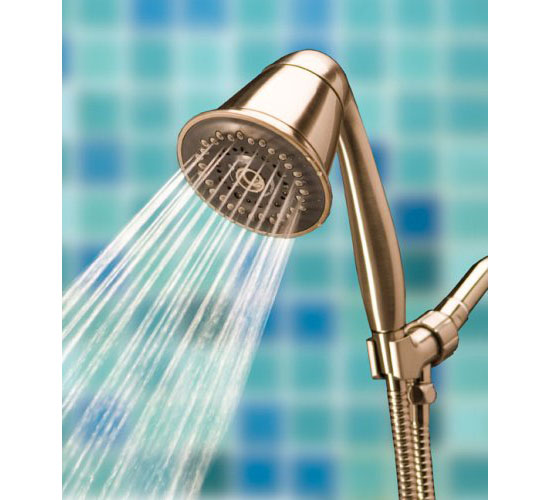 TriSpa Handheld Shower